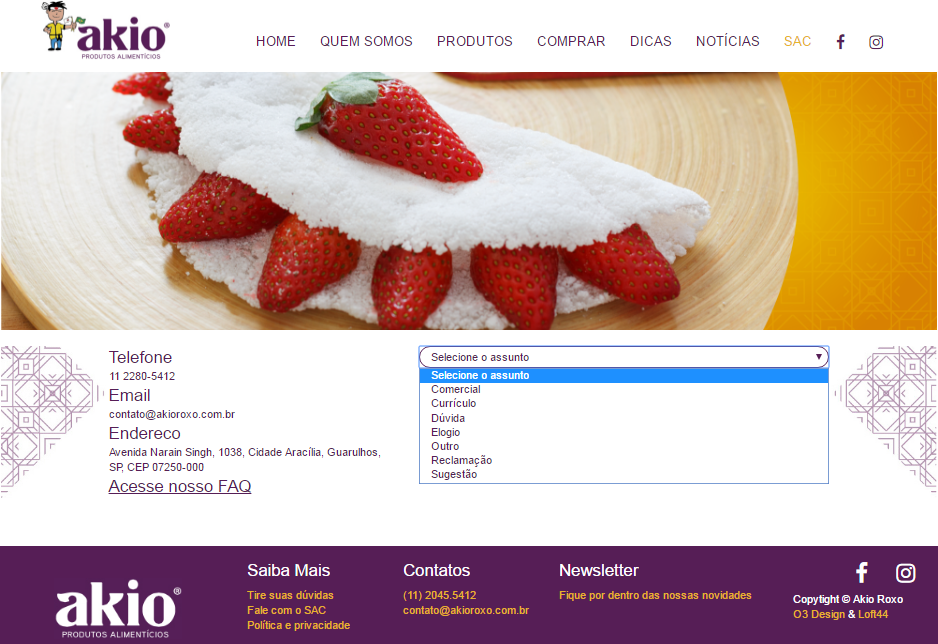 Novo website em WordPress - novo site akio sac
